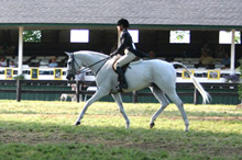 uville_adrienne_riley_trot